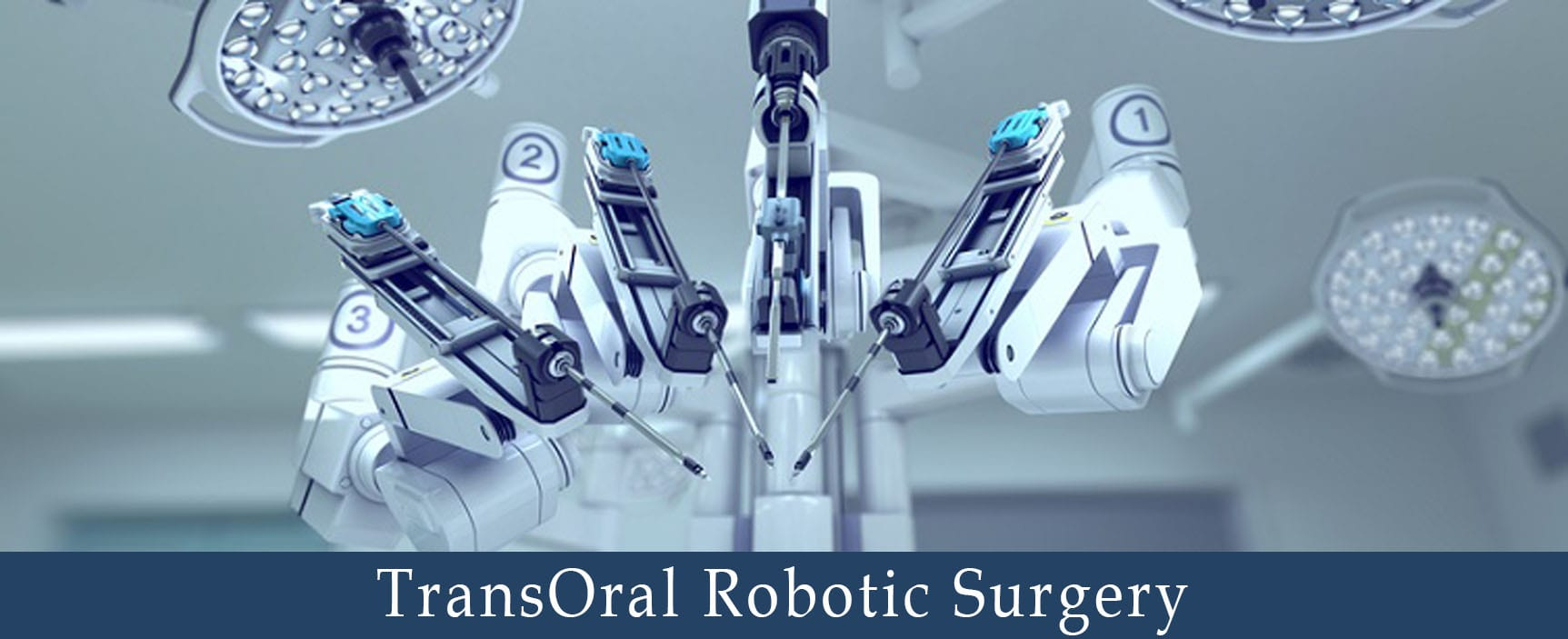 TransOral Robotic Surgery